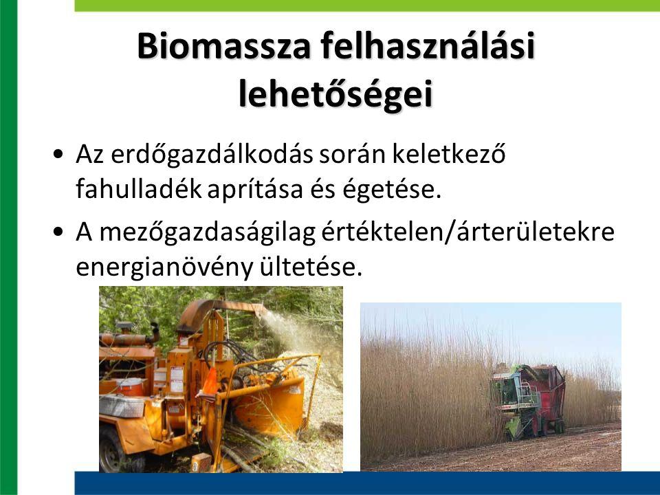 Biomassza felhasználási lehetőségei Az erdőgazdálkodás során keletkező fahulladék aprítása és égetése. A mezőgazdaságilag értéktelen/árterületekre ene