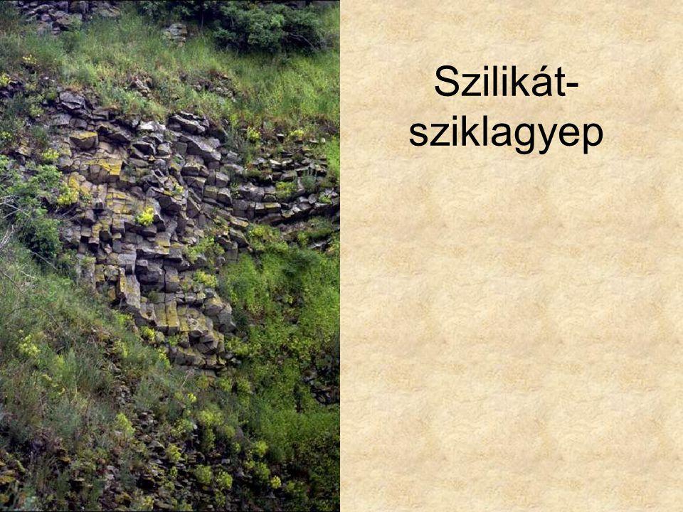 Szilikát- sziklagyep