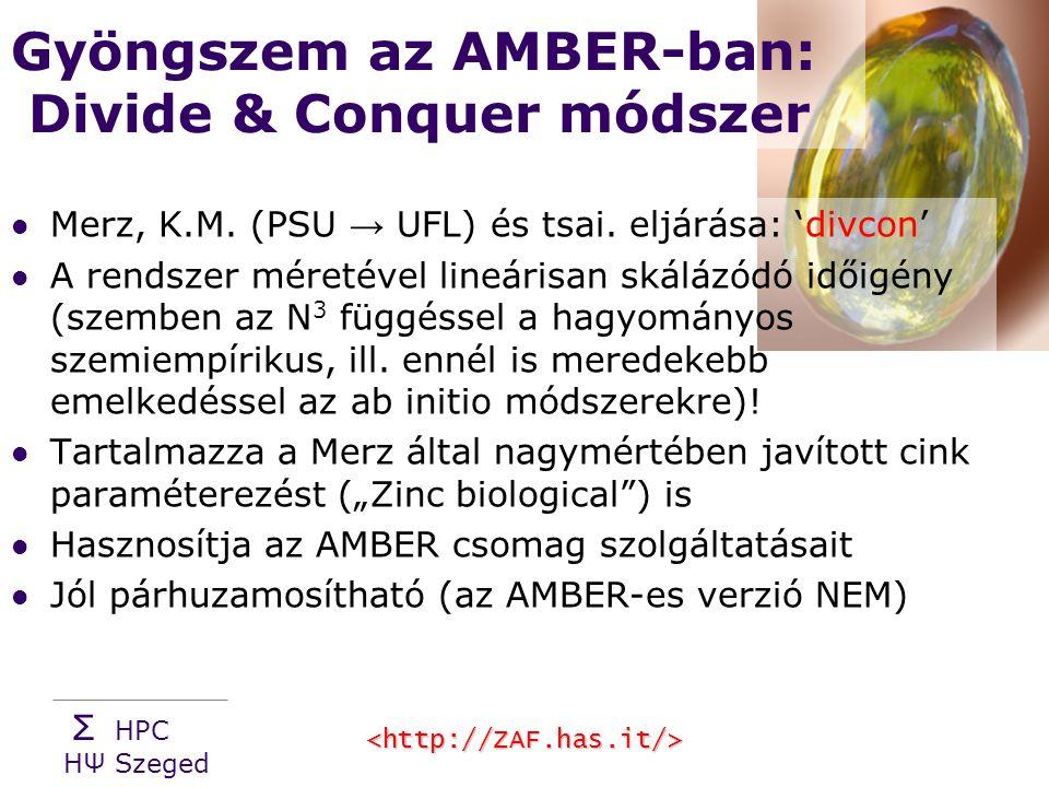 Σ HPC HΨ Szeged Gyöngszem az AMBER-ban: Divide & Conquer módszer Merz, K.M.