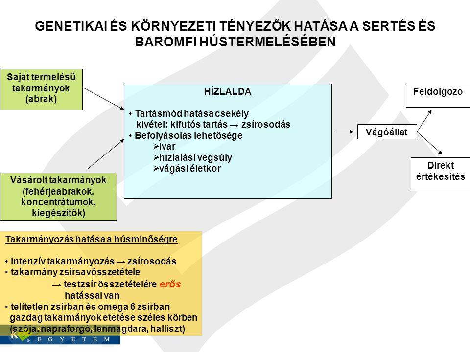 GENETIKAI ÉS KÖRNYEZETI TÉNYEZŐK HATÁSA A SERTÉS ÉS BAROMFI HÚSTERMELÉSÉBEN Saját termelésű takarmányok (abrak) Vásárolt takarmányok (fehérjeabrakok,