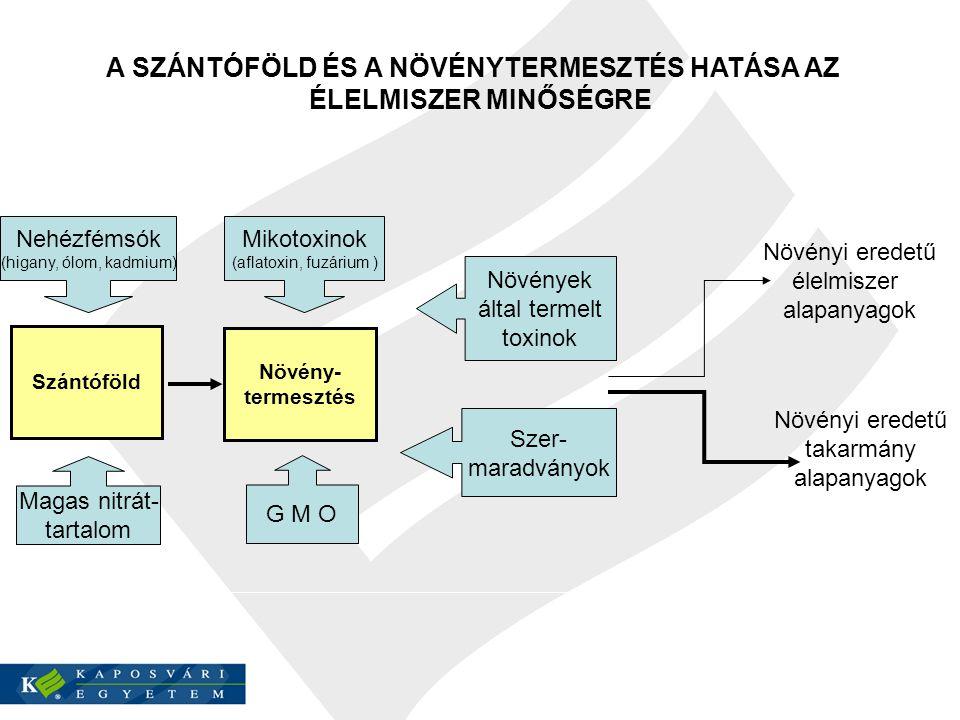 TérinformatikaTávérzékelésLaboratórium TÁMOGATOTTSÁG 1.3.