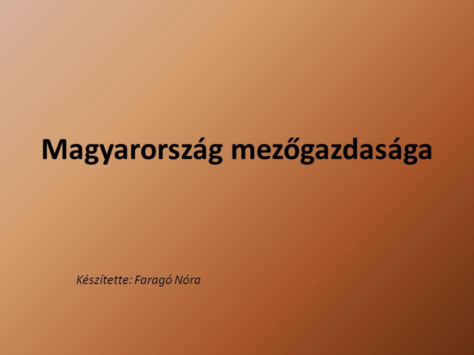 Magyarország mezőgazdasága Készítette: Faragó Nóra