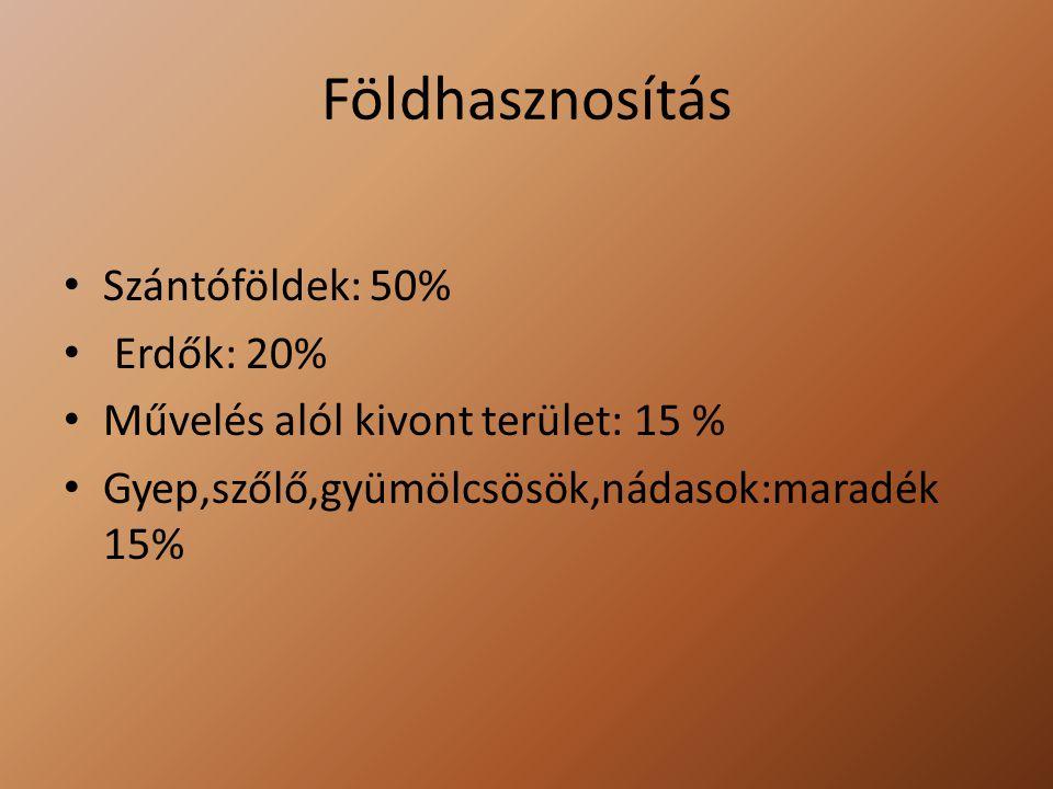 Földhasznosítás Szántóföldek: 50% Erdők: 20% Művelés alól kivont terület: 15 % Gyep,szőlő,gyümölcsösök,nádasok:maradék 15%