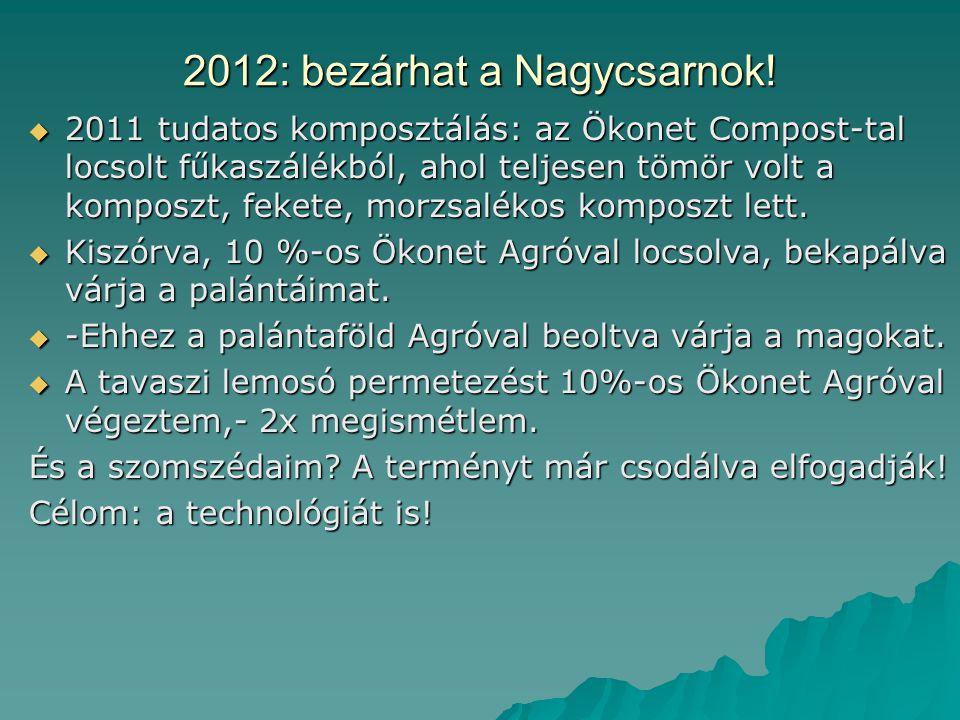2012: bezárhat a Nagycsarnok.