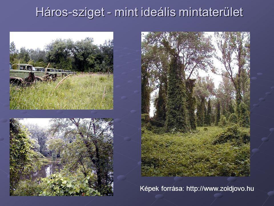 Képek forrása: http://www.zoldjovo.hu Háros-sziget - mint ideális mintaterület Háros-sziget - mint ideális mintaterület