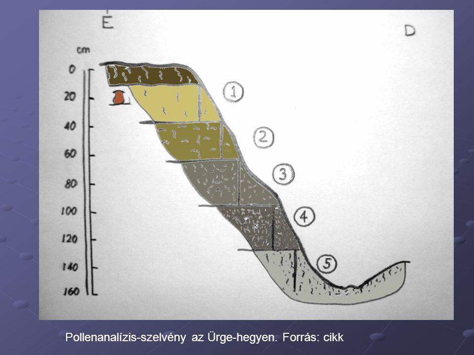 Pollenanalízis-szelvény az Ürge-hegyen. Forrás: cikk