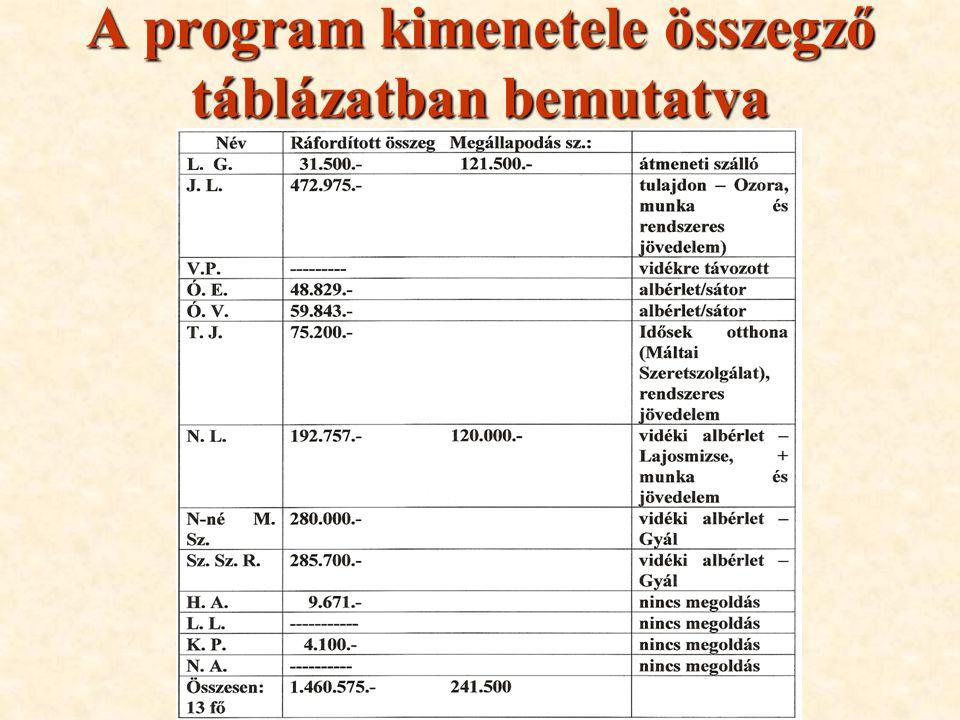 A program kimenetele összegző táblázatban bemutatva