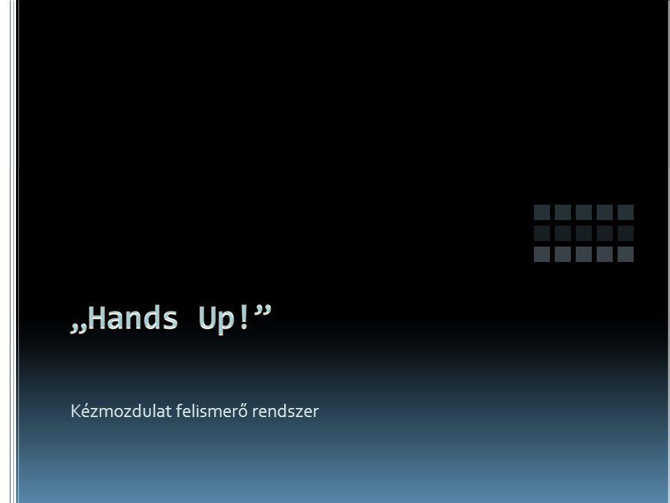 Kézmozdulat felismerő rendszer