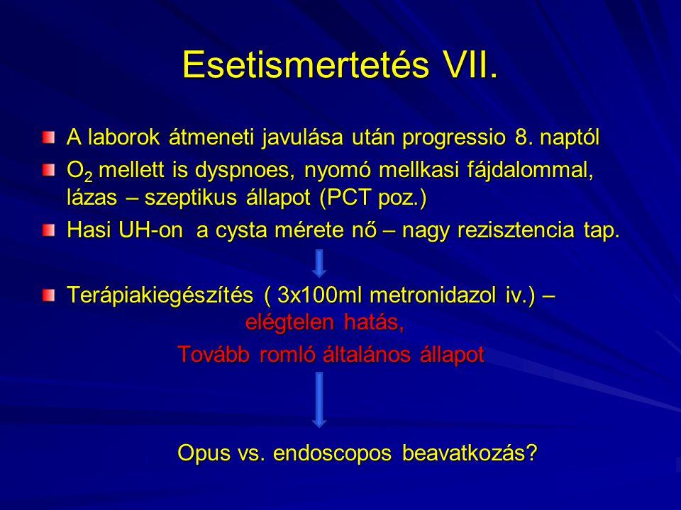 Esetismertetés VII. A laborok átmeneti javulása után progressio 8. naptól O 2 mellett is dyspnoes, nyomó mellkasi fájdalommal, lázas – szeptikus állap