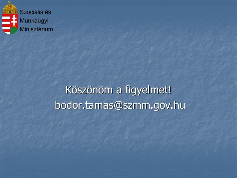 Köszönöm a figyelmet! bodor.tamas@szmm.gov.hu bodor.tamas@szmm.gov.hu