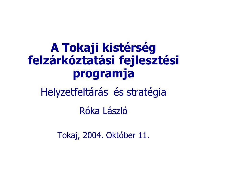 A Tokaji kistérség felzárkóztatási fejlesztési programja Helyzetfeltárás és stratégia Róka László Tokaj, 2004. Október 11.