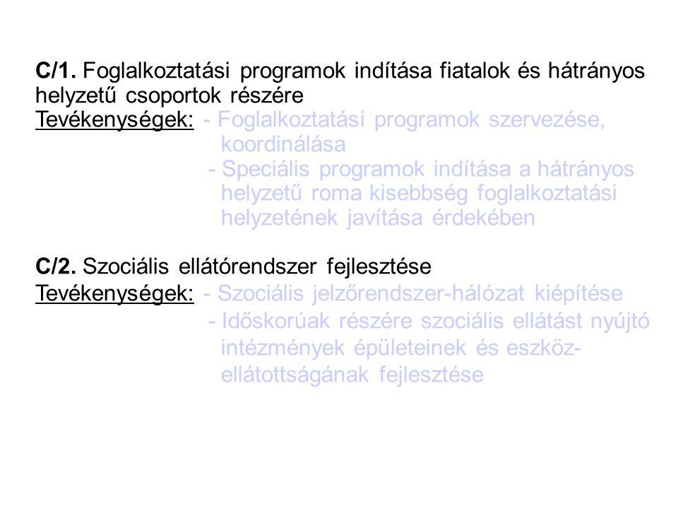 C) Szociális válságkezelés C/1. Foglalkoztatási programok indítása fiatalok és hátrányos helyzetű csoportok részére Tevékenységek: - Foglalkoztatási p