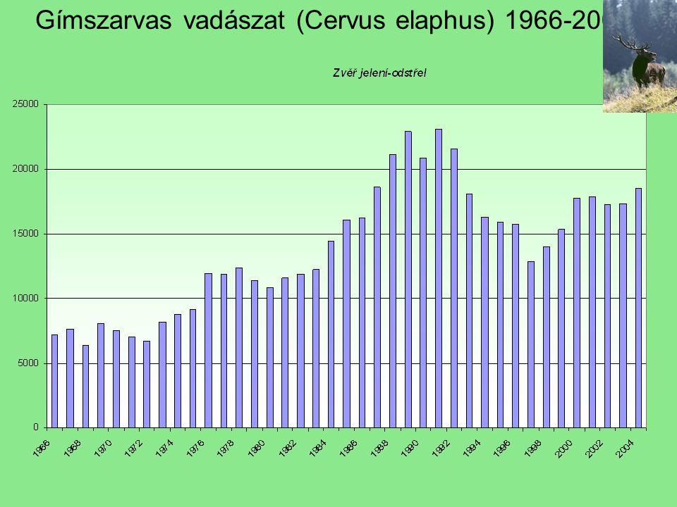 Gímszarvas vadászat (Cervus elaphus) 1966-2004