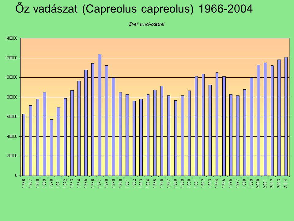 Őz vadászat (Capreolus capreolus) 1966-2004