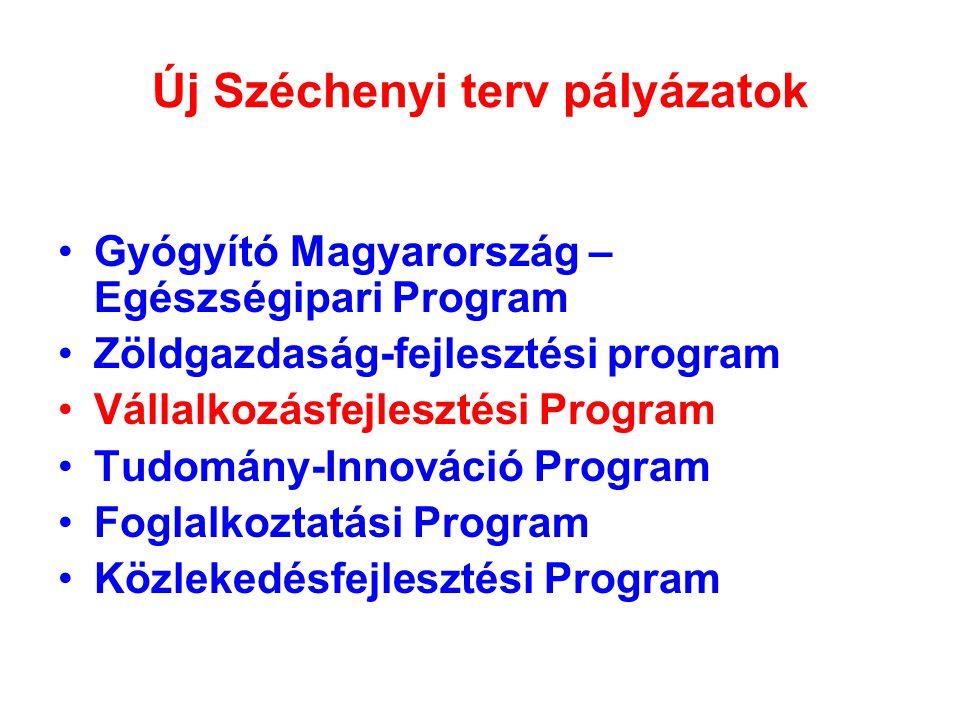 Új Széchenyi terv pályázatok Gyógyító Magyarország – Egészségipari Program Zöldgazdaság-fejlesztési program Vállalkozásfejlesztési Program Tudomány-Innováció Program Foglalkoztatási Program Közlekedésfejlesztési Program