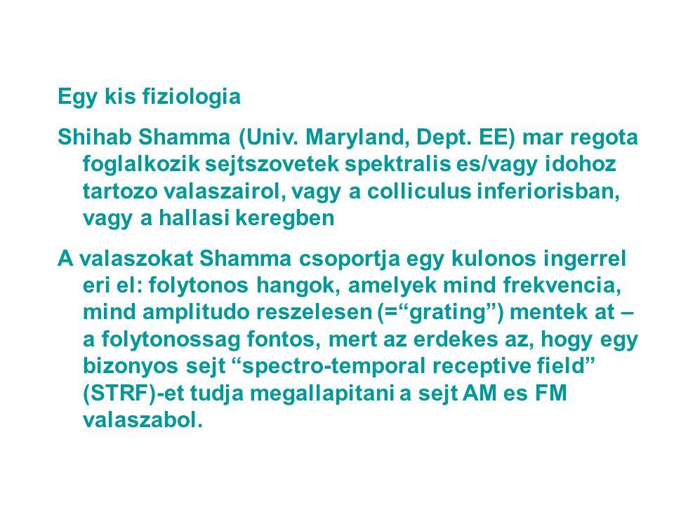 Egy kis fiziologia Shihab Shamma (Univ. Maryland, Dept.