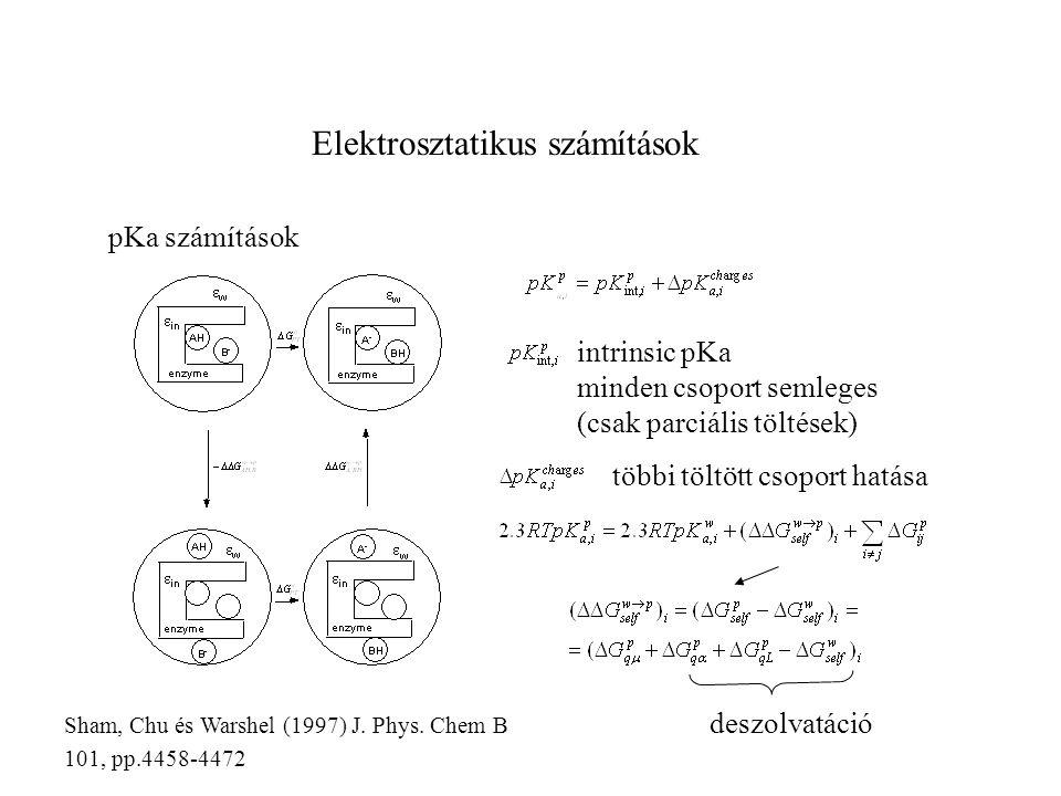 Elektrosztatikus számítások pKa számítások intrinsic pKa minden csoport semleges (csak parciális töltések) többi töltött csoport hatása deszolvatáció