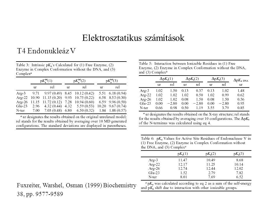 Elektrosztatikus számítások T4 Endonukleáz V Fuxreiter, Warshel, Osman (1999) Biochemistry 38, pp. 9577-9589