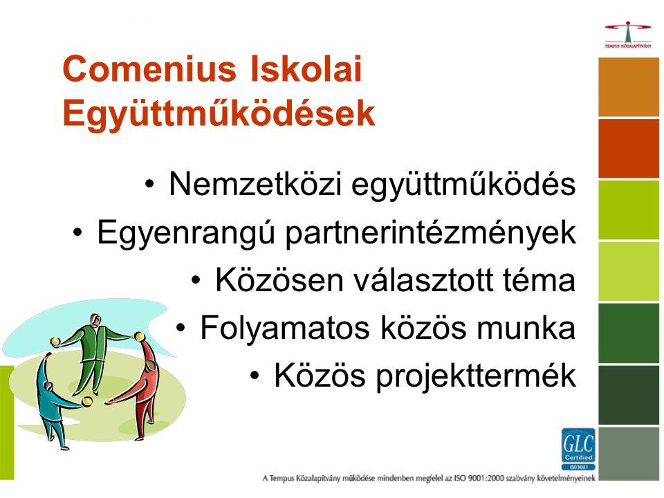Comenius Iskolai Együttműködések Nemzetközi együttműködés Egyenrangú partnerintézmények Közösen választott téma Folyamatos közös munka Közös projekttermék