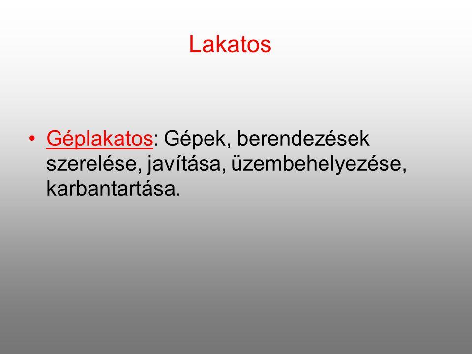 Lakatos Géplakatos: Gépek, berendezések szerelése, javítása, üzembehelyezése, karbantartása.