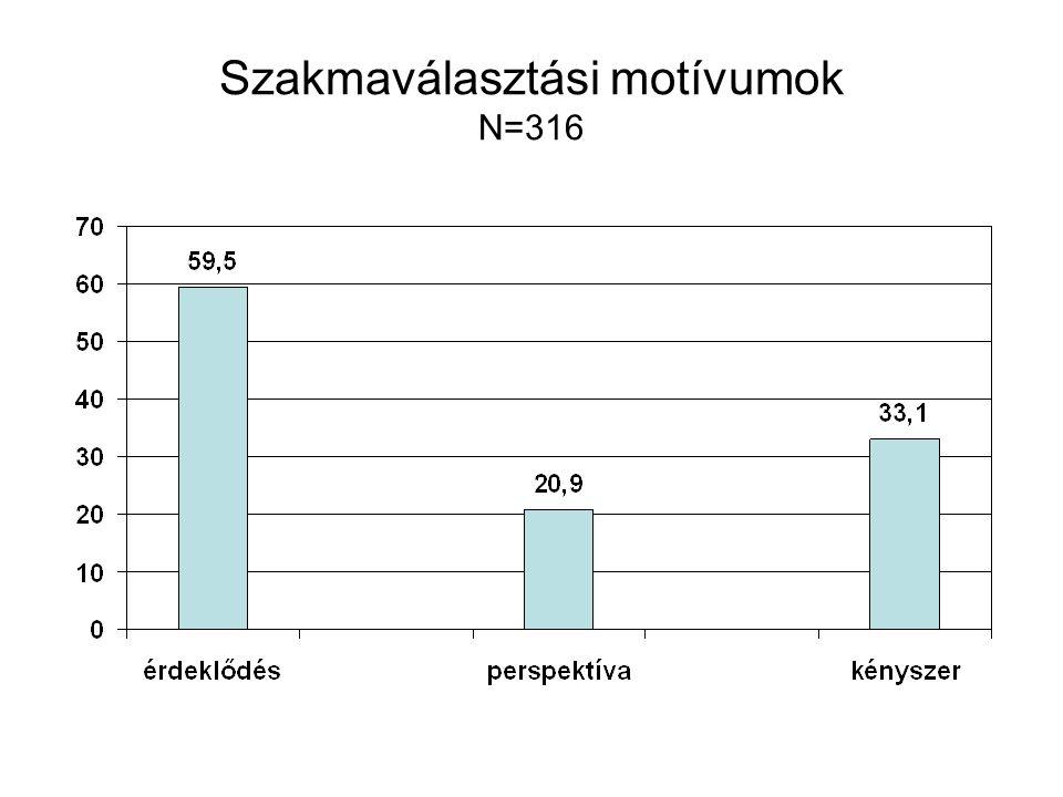 Szakmaválasztási motívumok N=316