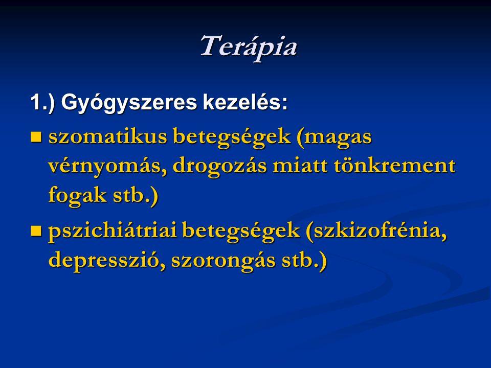 Terápia 1.) Gyógyszeres kezelés: szomatikus betegségek (magas vérnyomás, drogozás miatt tönkrement fogak stb.) szomatikus betegségek (magas vérnyomás, drogozás miatt tönkrement fogak stb.) pszichiátriai betegségek (szkizofrénia, depresszió, szorongás stb.) pszichiátriai betegségek (szkizofrénia, depresszió, szorongás stb.)
