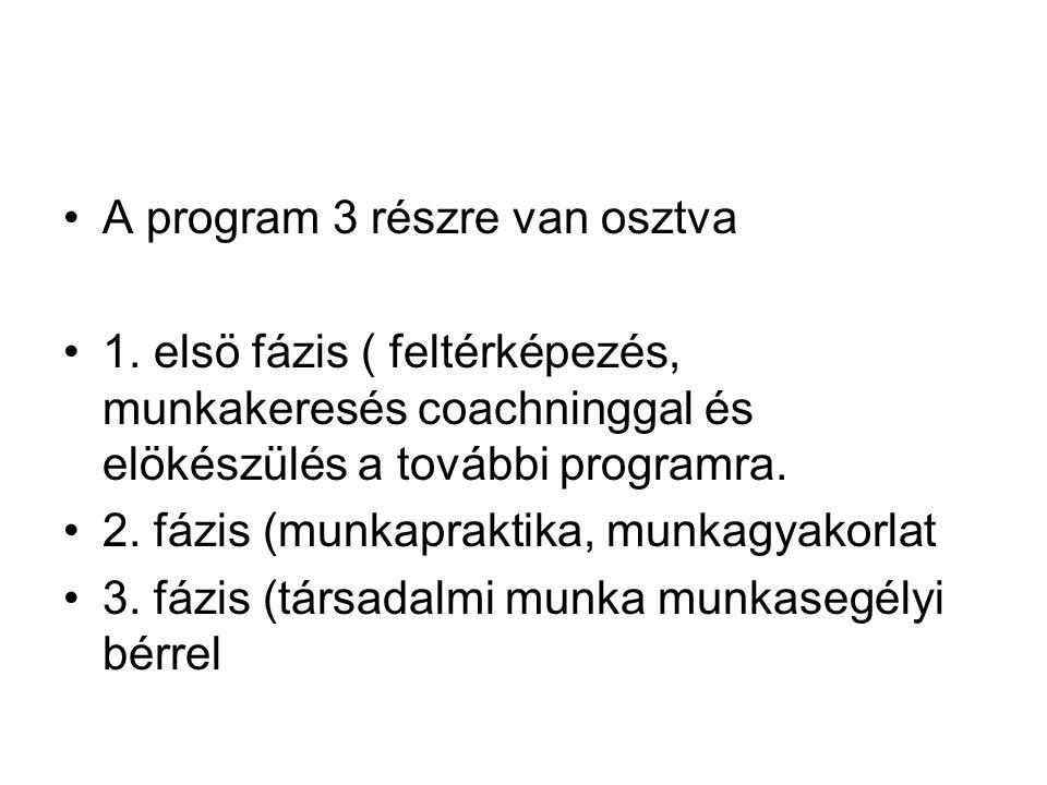 A program 3 részre van osztva 1. elsö fázis ( feltérképezés, munkakeresés coachninggal és elökészülés a további programra. 2. fázis (munkapraktika, mu