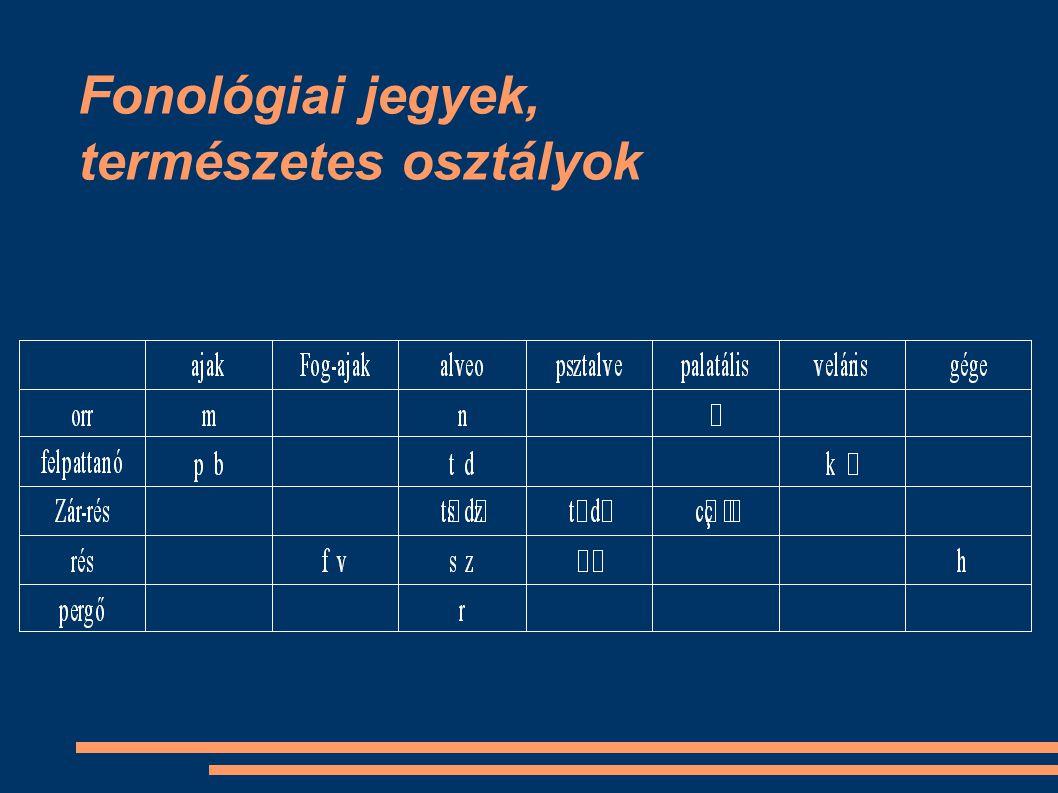Fonológiai jegyek, természetes osztályok