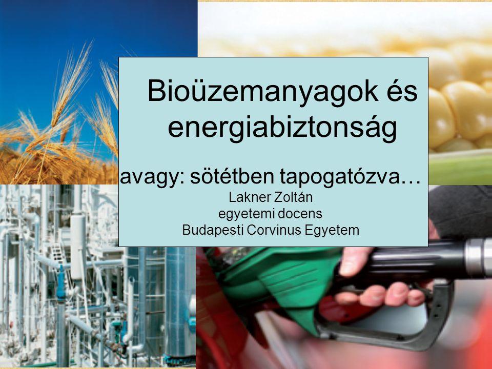 avagy: sötétben tapogatózva… Lakner Zoltán egyetemi docens Budapesti Corvinus Egyetem Bioüzemanyagok és energiabiztonság