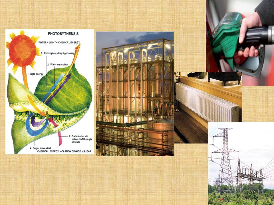 Két kérdés: Milyen térigénnyel érhető el a mai és a közeli jövőbeni igények kielégítéséhez elégséges termelés.