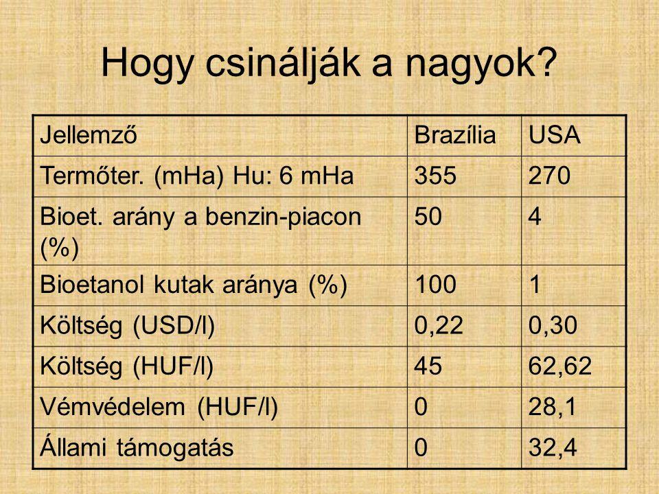Hogy csinálják a nagyok? JellemzőBrazíliaUSA Termőter. (mHa) Hu: 6 mHa355270 Bioet. arány a benzin-piacon (%) 504 Bioetanol kutak aránya (%)1001 Költs