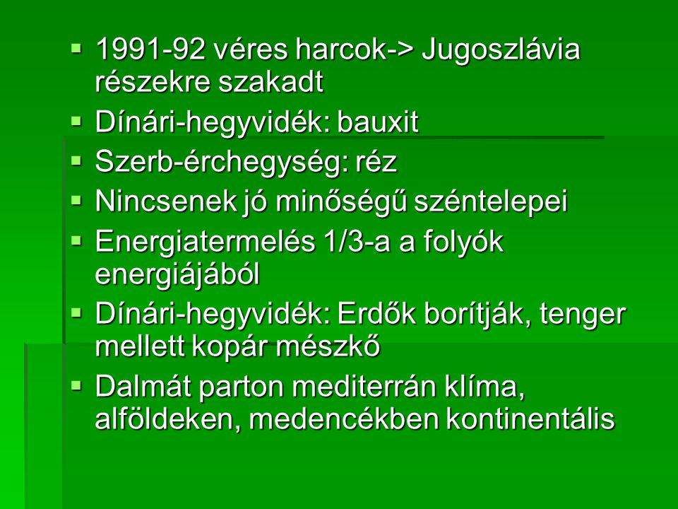  1991-92 véres harcok-> Jugoszlávia részekre szakadt  Dínári-hegyvidék: bauxit  Szerb-érchegység: réz  Nincsenek jó minőségű széntelepei  Energia