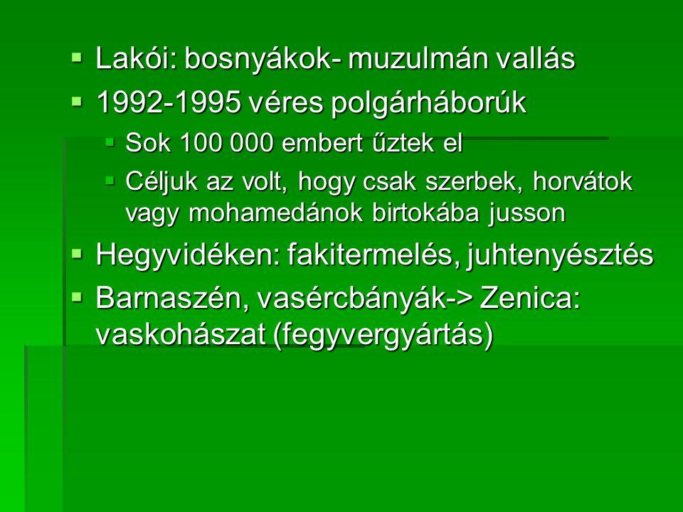  Lakói: bosnyákok- muzulmán vallás  1992-1995 véres polgárháborúk  Sok 100 000 embert űztek el  Céljuk az volt, hogy csak szerbek, horvátok vagy m