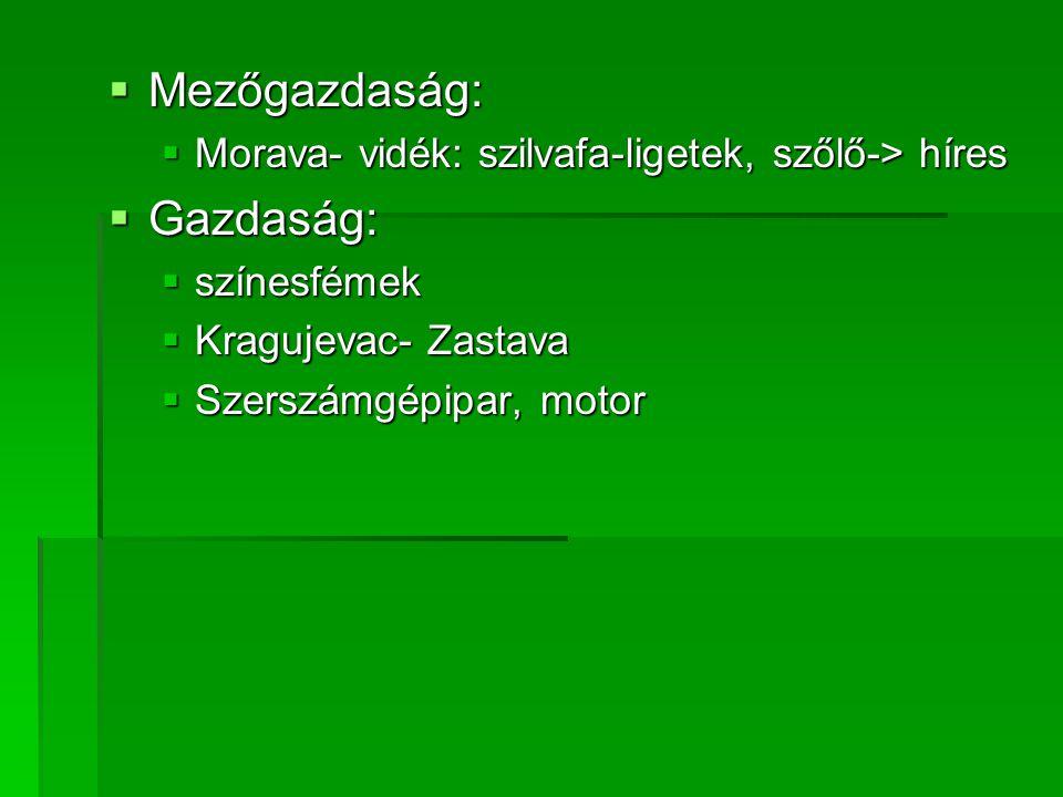  Mezőgazdaság:  Morava- vidék: szilvafa-ligetek, szőlő-> híres  Gazdaság:  színesfémek  Kragujevac- Zastava  Szerszámgépipar, motor