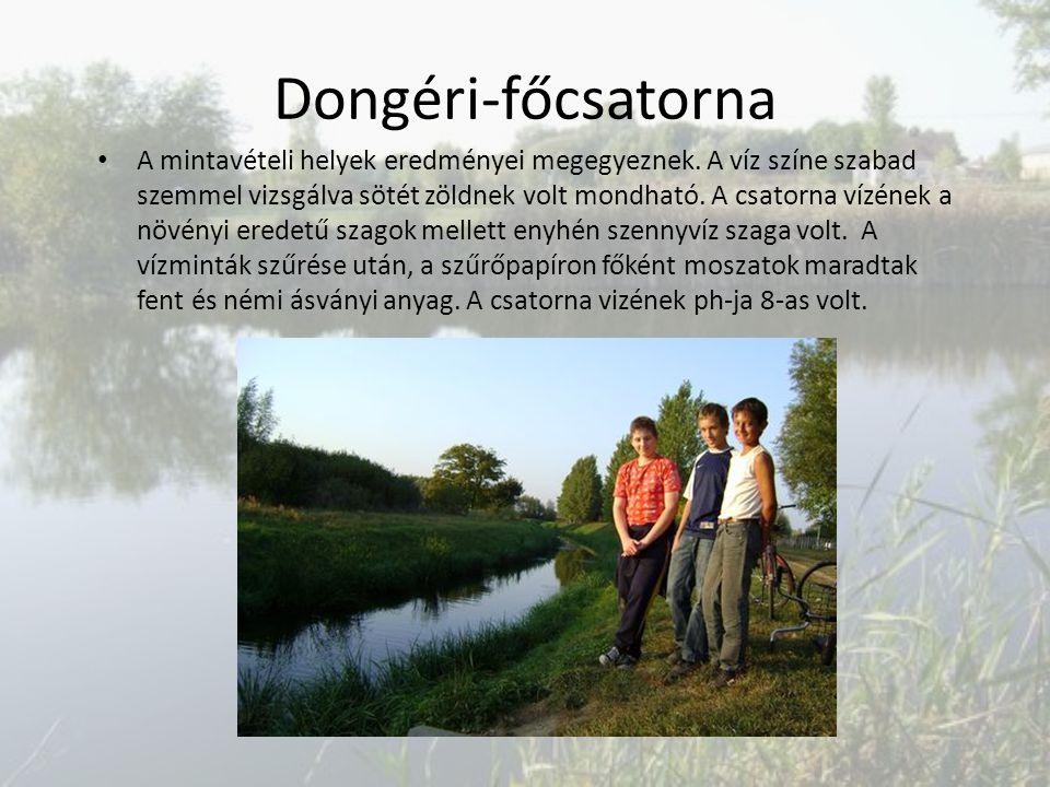 Dongéri-főcsatorna A mintavételi helyek eredményei megegyeznek. A víz színe szabad szemmel vizsgálva sötét zöldnek volt mondható. A csatorna vízének a