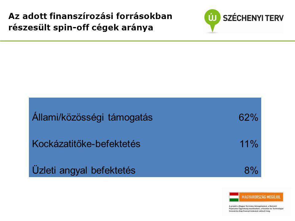 Az adott finanszírozási forrásokban részesült spin-off cégek aránya Állami/közösségi támogatás62% Kockázatitőke-befektetés11% Üzleti angyal befektetés