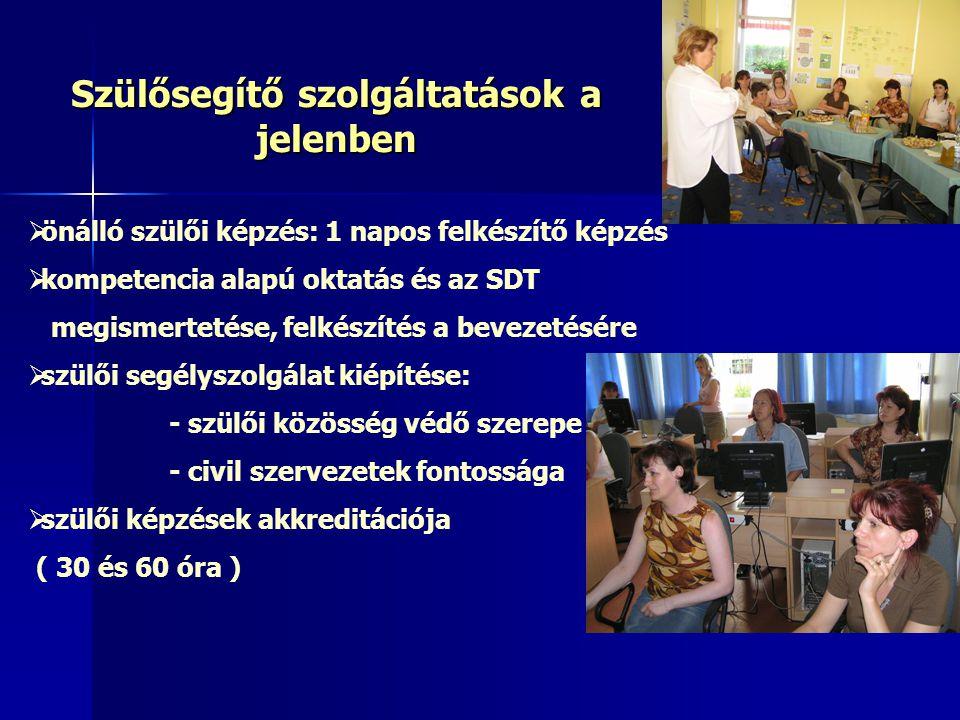  önálló szülői képzés: 1 napos felkészítő képzés  kompetencia alapú oktatás és az SDT megismertetése, felkészítés a bevezetésére  szülői segélyszol