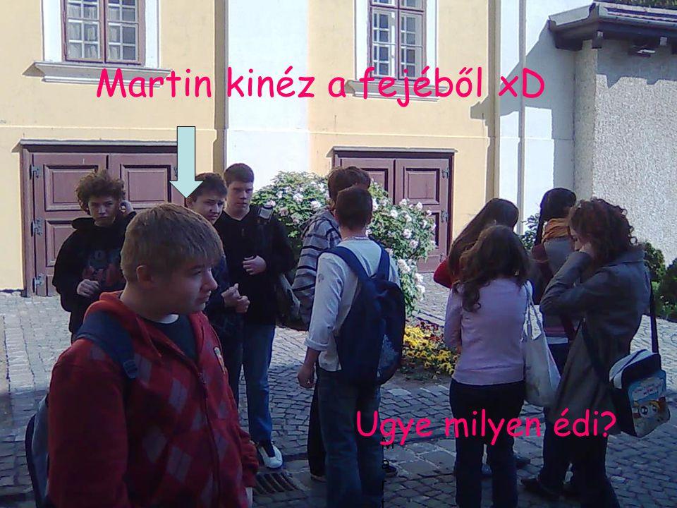 MartinMMartinM Martin kinéz a fejéből xD Ugye milyen édi