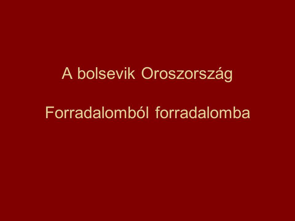 A bolsevik Oroszország Forradalomból forradalomba