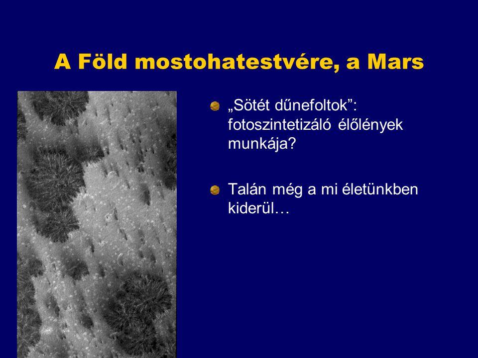 """A Föld mostohatestvére, a Mars """"Sötét dűnefoltok"""": fotoszintetizáló élőlények munkája? Talán még a mi életünkben kiderül…"""