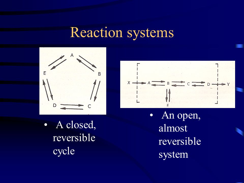 Reaction systems A closed, reversible cycle An open, almost reversible system