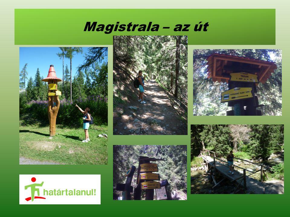 Magistrala – az út