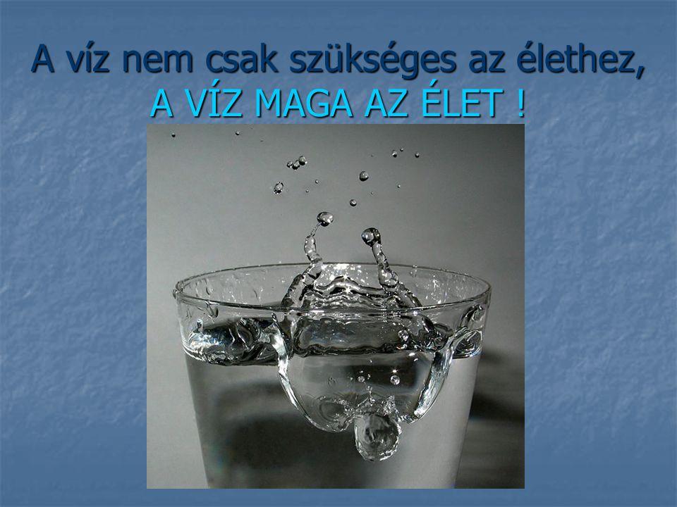 A víz nem csak szükséges az élethez, A VÍZ MAGA AZ ÉLET !