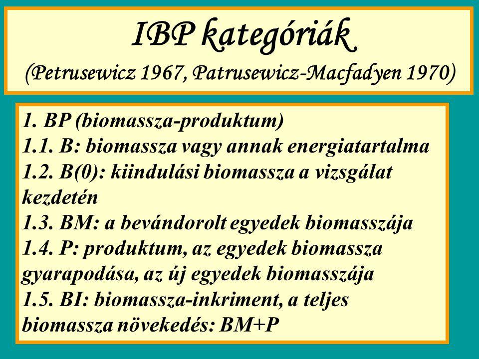 IBP kategóriák (Petrusewicz 1967, Patrusewicz-Macfadyen 1970) 1. BP (biomassza-produktum) 1.1. B: biomassza vagy annak energiatartalma 1.2. B(0): kiin