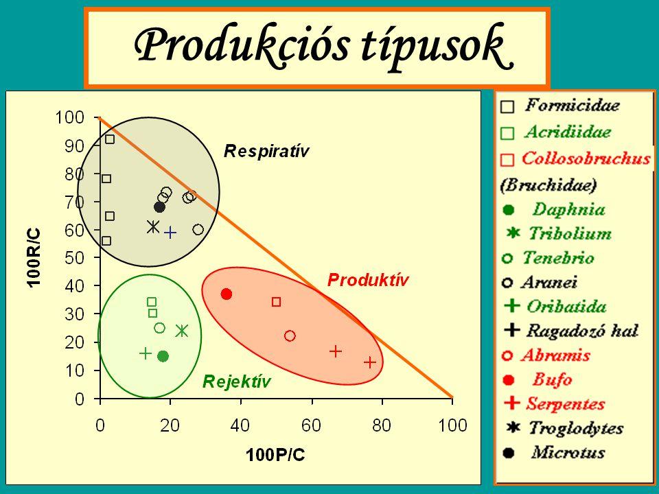 Produkciós típusok