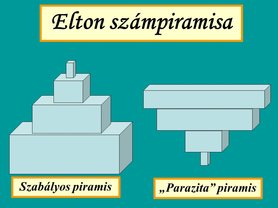 "Elton számpiramisa Szabályos piramis ""Parazita"" piramis"