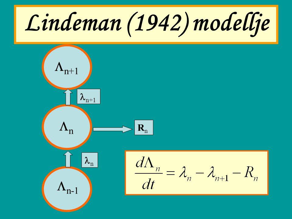 Lindeman (1942) modellje nn  n-1  n+1 n+1 n RnRn