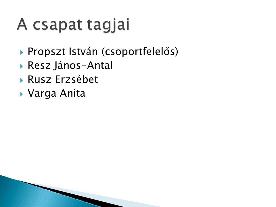  Propszt István (csoportfelelős)  Resz János-Antal  Rusz Erzsébet  Varga Anita