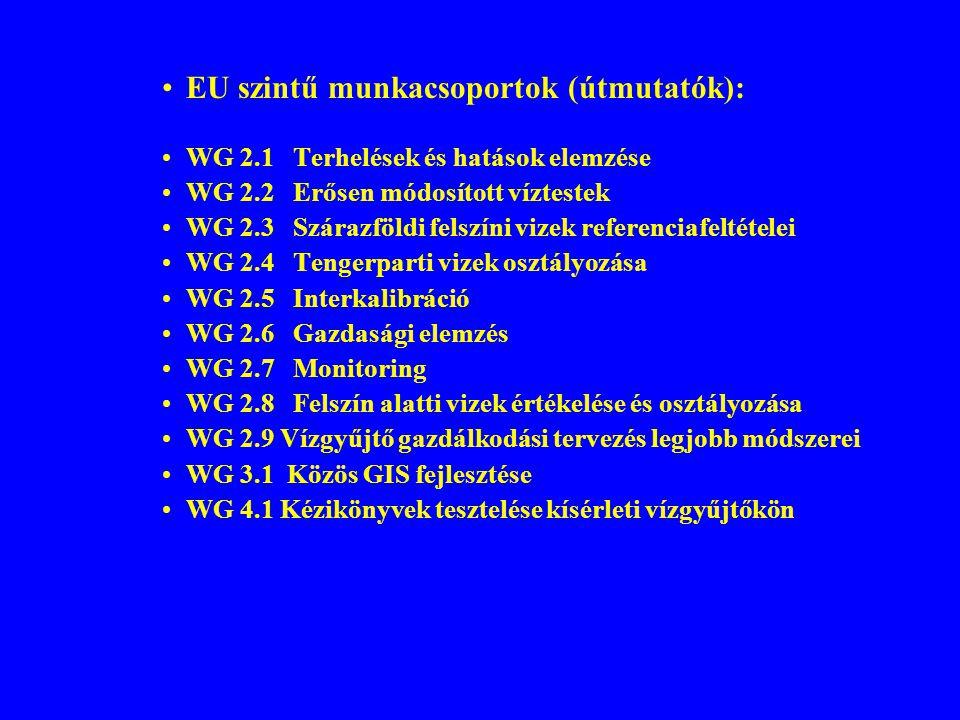EU szintű munkacsoportok (útmutatók): WG 2.1 Terhelések és hatások elemzése WG 2.2 Erősen módosított víztestek WG 2.3 Szárazföldi felszíni vizek refer