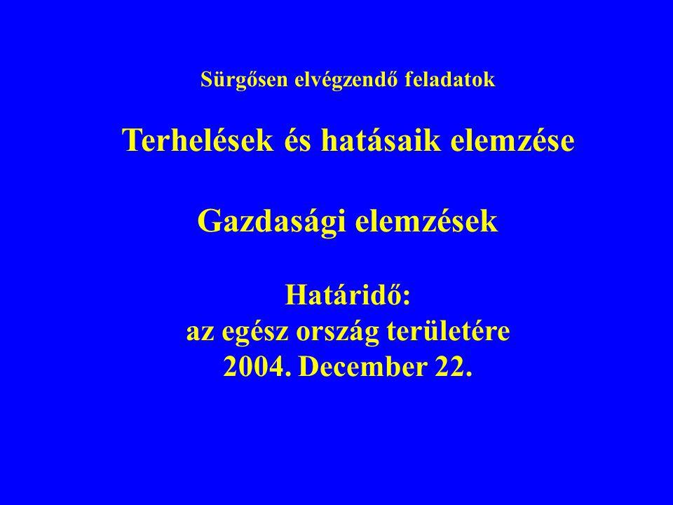 Sürgősen elvégzendő feladatok Terhelések és hatásaik elemzése Gazdasági elemzések Határidő: az egész ország területére 2004. December 22.